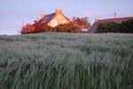 Die Abendsonne taucht das Ferienhaus in ein leuchtendes Rotorange.